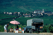 France, Alsace, Haut Rhin, St Hippolyte, roadside wine vendor