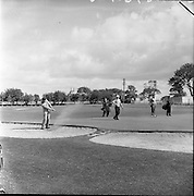 20/07/1962<br /> 07/20/1962<br /> 20 July 1962<br /> Woodbrook Irish Hospitals' Golf Tournament at Woodbrook Golf Course, Dublin. B.J. Bamford, (Wentworth) drives out of bunker on 2nd, with French Open Champion, A.A. Murray, Australia, (white cap) and J.R.M. Jacobs (Sandy Lodge) in background.