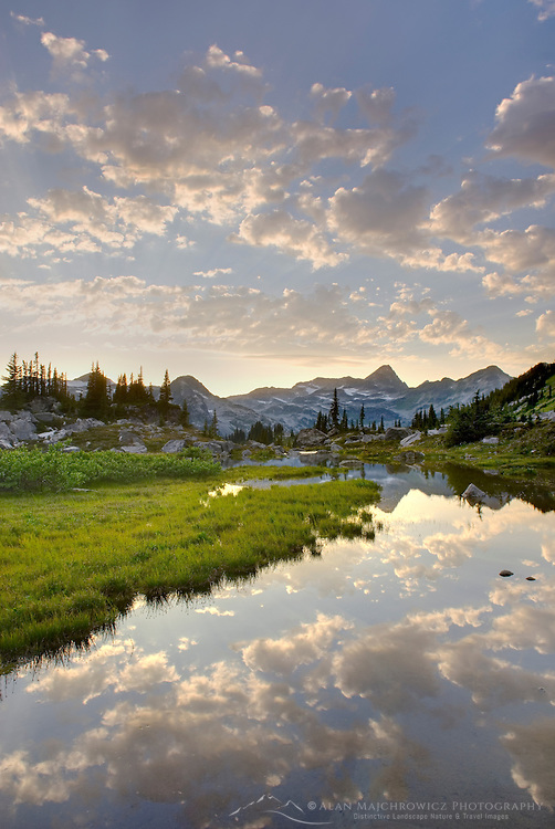Eveing clouds reflected in stream flowing in an alpine basin of Mount Rohr, Coast Mountains British Columbia Canada beauty in nature
