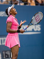 Venus Williams at the U.S. Open.