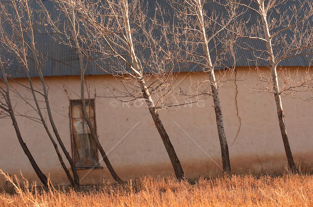New Mexico adobe home