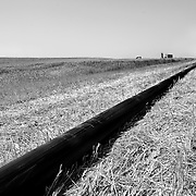 "Oil pipe line runs through fields outside of Watford City, North Dakota. Williston (""Kuwait on the Prairie""), Watford City and their neighboring towns in North Dakota sit atop the biggest lake of oil to be discovered in North America since Alaska's Prudhoe Bay in 1968. .."