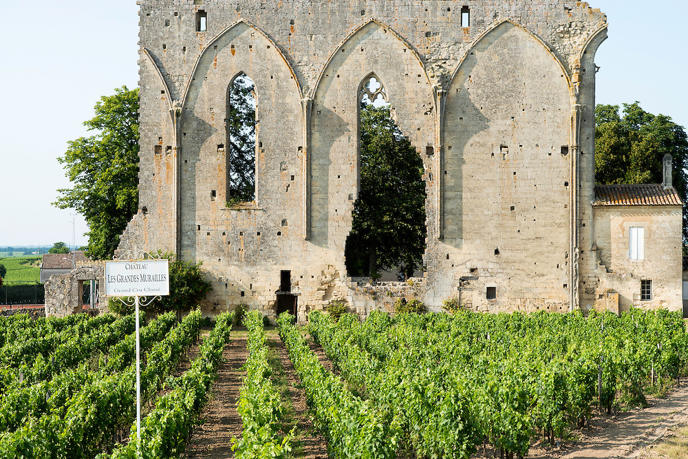 FRANCE, Saint Emilion<br /> Les Grandes Murailles (the Big Wall), what remains of a Dominican convent dating back to the XIII century, as well as the vineyards of Chateau Les Grandes Murailles (Grand Cru Class&eacute;)