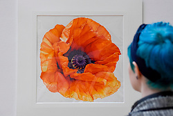 © Licensed to London News Pictures. 24/02/2017. London, UK.   Members of the public view the work of some of the world's best botanical artists through a display of previously unseen work at the RHS London Botanical Art Show.  Taking place this weekend, the show features artists from the UK and internationally including USA, Italy, Japan, New Zealand and South Korea.   Photo credit : Stephen Chung/LNP