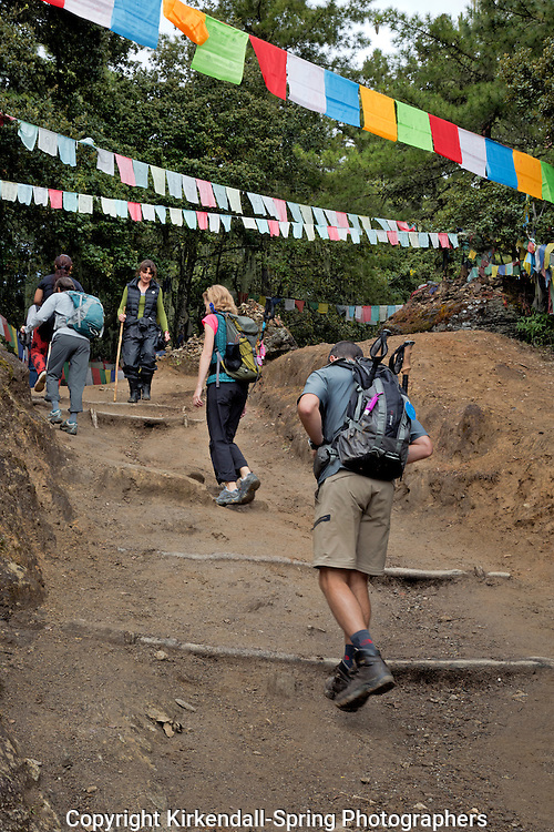 BU00330-00...BHUTAN - Hikers on the upper portion of the well-used trail to Taktshang Goemba, (the Tiger's Nest Monastery). (MR)