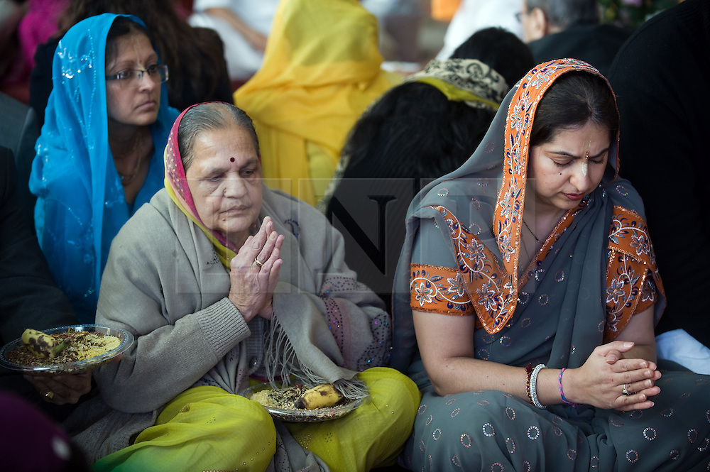 """© under license to London News pictures.  06/11/2010.Women praying during Celebrations for Diwali, the Hindu new year, at Gokul Centre for Cow Protection and Working Oxen in Aldenham near Watford, Hertfordshire today (Sat). The centre, which was originally donated by George Harrison, is unique in the western world producing """"Ahimsa Milk"""" at a cost of £3 per litre without harm to any living being. The Centre is part of Bhaktivedanta Manor, a Hindu place of worship."""