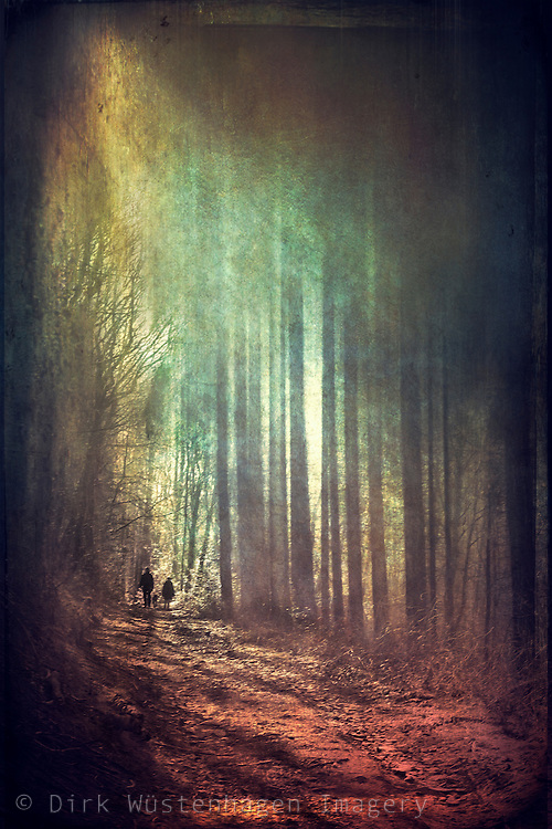 A couple with a dog in a forest. Abtraction - texturized and manipulated photograph
