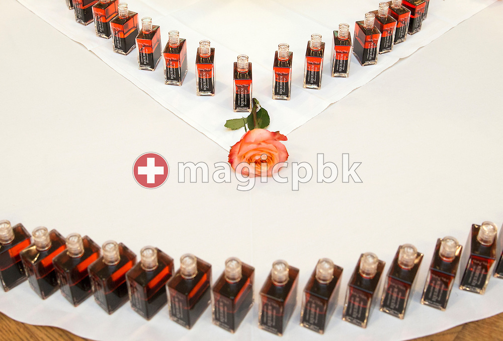 Several B114 Equilibrium bottles (Raguel) are pictured during the Aura-Soma Essentials and Essentials Instructor course in Grossgmain near Salzburg, Austria, Saturday, Nov. 28, 2015. (Photo by Patrick B. Kraemer / MAGICPBK)
