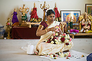 18 MAY 2008 -- MARICOPA, AZ: A woman sews flower garlands in front of Hindu deities in a new Hindu temple in Maricopa, AZ, Sunday. More than 3,000 Hindus from Arizona, southern California and New Mexico came to Maricopa, a small town in the desert about 50 miles south of Phoenix, for the dedication of the Maha Ganapati Temple of Arizona. It is the first Hindu temple in Arizona designed according to ancient South Indian Hindu architectural guides. Craftsmen from India came to Maricopa to complete the interior details of the temple. The dedication ceremonies lasted three days.   Photo by Jack Kurtz / ZUMA Press
