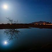 "A rare ""super moon"" reflecting in a pond at Veteran's Memorial Park - Chandler, AZ"