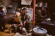 Mongolia. young girl with a  new born sheep. Baldan Family, cattle breeder in Karakorum area, Olg Barujin Sala   /  pendant le dur hiver mongol, la famille baldan éleveurs a Olg barujin sala accueille les jeunes agneaux à l'intérieur de la yourte familiale. /  313502/7    L940209a  /  P0000867