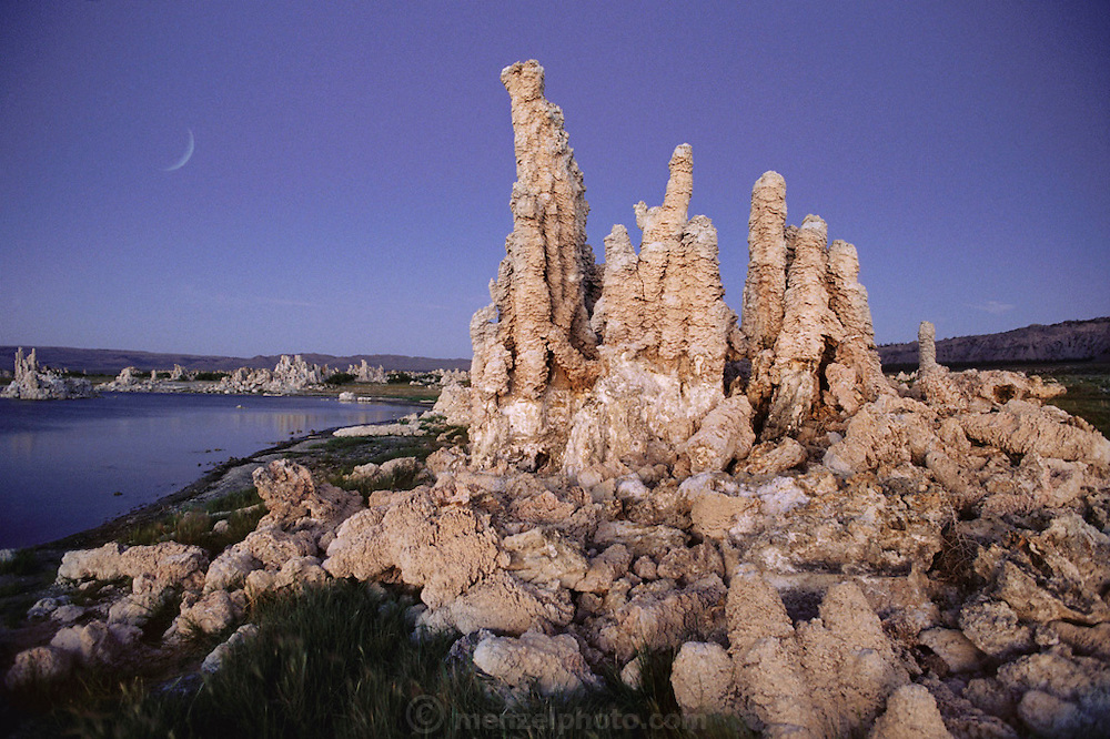 Tufa towers in Mono Lake at dawn with crescent moon. Mono Lake lies near the town of Lee Vining. It is at least 700,000 years old and one of the oldest continuously existing lakes on the continent. Tufa towers (photographed) are made from calcium and carbonate combine to form limestone, which builds up over time around the lake bottom spring openings. Declining lake levels have exposed the tufa towers we see today. Some of the tufa towers are up to 30 feet high. Route 395: Eastern Sierra Nevada Mountains of California.