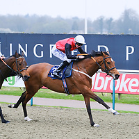 Lingfield 6th April