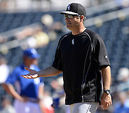 SURPRISE, AZ - MARCH 10:  Manager Robin Ventura #23 of the Chicago White Sox bats makes a pitching change during the spring training game between the Kansas City Royals and Chicago White Sox on March 10, 2015 at Surprise Stadium in Surprise, Arizona. (Photo by Ron Vesely)   Subject:  Robin Ventura