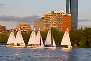 Harvard University Sailing Team  practicing on the Charles River