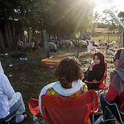 "DUMFRIES, VA - SEP12: Muslim families wait at the Shah Farm in Dumfries, VA, September 12, 2016, for the animal they chose to be slaughtered and butchered, to celebrate Eid al-Adha, the ""Feast of the Sacrifice"". (Photo by Evelyn Hockstein/For The Washington Post)"