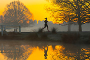 UNITED KINGDOM, London: 26 February 2019. A jogger makes her way through Richmond Park this morning during sunrise on what is set to be the warmest day in February since records began. Temperatures are set to reach up to 20 degrees Celsius in the capital today. Rick Findler / Story Picture Agency