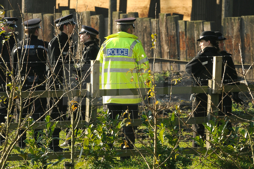 © under license to London News Pictures. 26.11.2010 Police search fields and outhouses for a young boy believed to have gone missing in kent in Vigo Village. The boy believed to be aged 5-6 years old was wearing spidermans outfit one a member of the public spotted him at 1.30 am .  Nobody has reported a child missing in the area. Picture credit should read Grant Falvey/London News Pictures