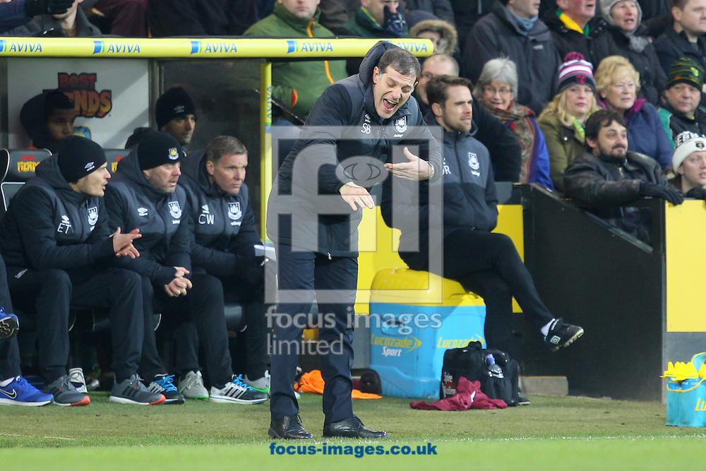 West Ham Manager Slaven Bilic during the Barclays Premier League match at Carrow Road, Norwich<br /> Picture by Paul Chesterton/Focus Images Ltd +44 7904 640267<br /> 13/02/2016