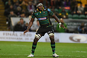 Northampton Saints lock Api Ratuniyarawa (19) during the Gallagher Premiership Rugby match between Northampton Saints and Harlequins at Franklins Gardens, Northampton, United Kingdom on 1 November 2019.