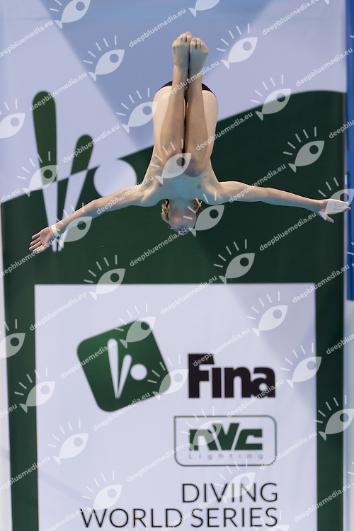 Opening Ceremony<br /> FINA/NVC Diving World Series 2016 Dubai<br /> Hamdan Sport Complex -Dubai United Arab Emirates U.A.E. UAE<br /> March 17 -19 2016<br /> Day 0 March 16th<br /> Photo G.Scala/Insidefoto/Deepbluemedia