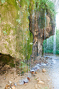 Delicate waterfall of fresh spring water near the Ermita de Sta Elena, Pyrenees Mountains, Huesca province, Aragon, Spain