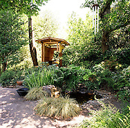 The Heavenly Poodle Pavilion and water feature in the shade garden of Sandra Adams