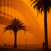 Man Photographing the Sydney Harbour Bridge during dust storm, September 23, 2009. The Dust storm was caused by gale force winds blowing in from the drought stricken inland. The storm was described as being the worst in 70 years.<br /> Sold: 1 of 25