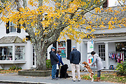 Locals out dog walking their pets meet up for a chat along High Street at Chatham, Cape Cod, New England, USA