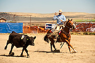 Wilsall Ranch Rodeo, Montana, Ranch Horse Competition, Chance Mathews, Rockie Ridge Riders Team