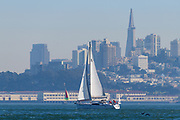 San Francisco skyline as seen from the water with sailboat.
