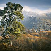 Beinn an Dothaidh from Loch Tulla