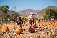 20121014 Pumpkin Fest
