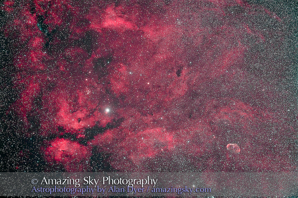 Gamma Cygni nebulosity aka the IC 1318 complex, plus the Crescent Nebula, NGC 6888 at right, in central Cygnus, taken on a superb night from home July 30, 2011. This is a stack of 5 x 12 minute exposures at ISO 800 with the filter-modified Canon 5D MkII and the Borg 77mm f/4.3 astrograph lens (300mm focal length), and using the IDAS V3 nebula filter. Orientation is tilted off true north at top (my usual orientation) to take in NGC 6888 and the little blue reflection nebulas at upper left.