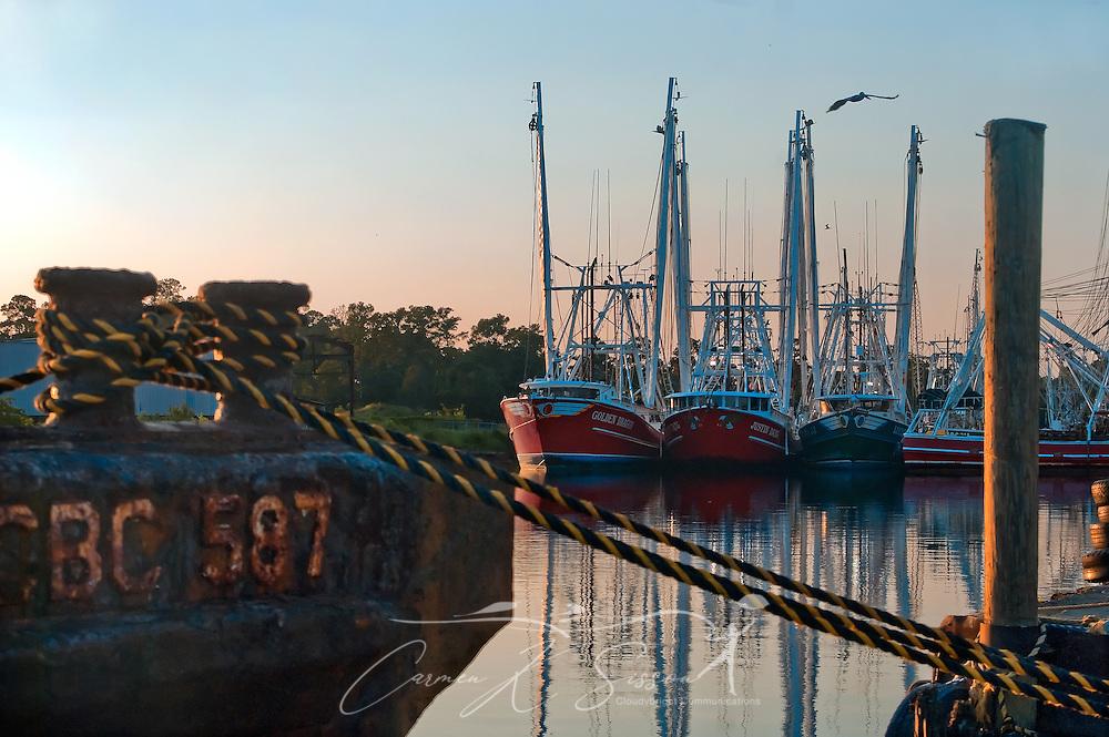 Shrimp boats dock in Bayou La Batre, Ala., July 3, 2010. (Photo by Carmen K. Sisson/Cloudybright)