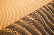 Early morning sunlight illuminates a sand dune Western Desert, Egypt