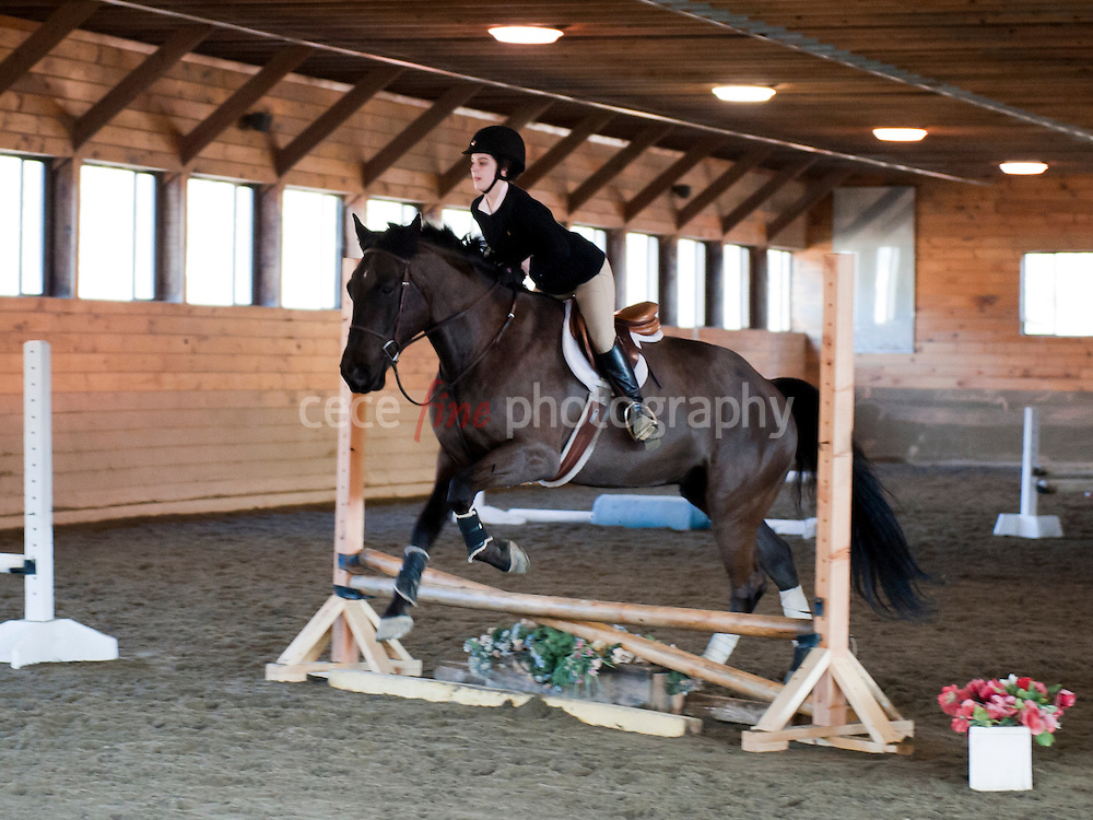Belle Wood Stables Horse Show<br />