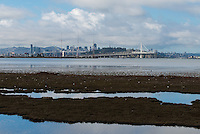 090-P91716<br /> <br /> Emeryville Crescent State Marine Reserv<br /> McLaughlin Eastshore State Park  <br /> &copy;2016, California State Parks.<br /> Photo by Brian Baer