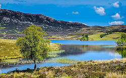 Loch Tarff, Inverness-shire, Scotland<br /> <br /> (c) Andrew Wilson | Edinburgh Elite media
