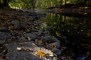 Salisbury Mills, New York  - Autumn leaves on the rocks by the Moodna Creek on Oct. 5, 2013.