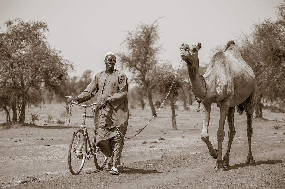 Portrait of a Burkinabe man pushing his bicycle and leading his camel on a leash through the Sahel of northern Burkina Faso