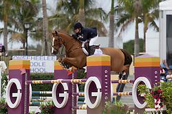 Dinan Katherine (USA) - Nougat du Vallet<br /> Horseware GP CSI 2*<br /> Wellington 2012<br /> © Hippo Foto - Cealy Tetly