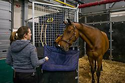 Dubbeldam Jeroen, NED, SFN Zenith NOP<br /> Indoor Brabant 2018<br /> © Sharon Vandeput<br /> 11/03/18