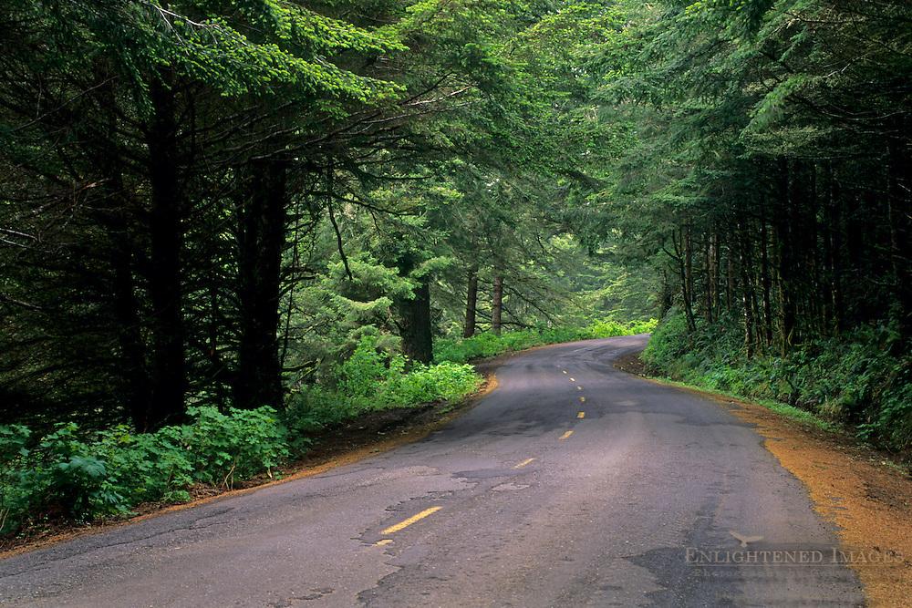 The Mattole Road, along the Lost Coast, Humboldt County, California
