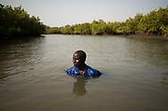 "Bassirou Sambou submerged in an estuary that runs through the mangroves near his community in the Casamace region of southern Senegal. Drought and rising sea levels due to climate change have caused the salinization of the mangrove's unique ecosystem. As a result, large swaths of mangrove forests and the rich biodiversity that they harbor have been destoyed or degraded in the region. The way of life and culture of the Jola (Diola) people is profoundly linked to their environment. Their traditional livelihoods are based on rice farming and fishing. As the mangroves died off, fish stocks disappeared and rice patties were invaded by salt water, Bassirou Sambou and his friend Salatou Sambou created the Kawawana association (an acronym in the local dialect for ""Let's all preserve our patrimony""). The association has managed to replant thousands of mangrove trees and have the entire area declared an ""Aire du Patrimoine Autochtone et Communautaire"" (An Area of Aboriginal and Community Heritage) which allows them to protect and regulate the exploitation of the area's natural resources. Their initiative has become a model for many other communities in the region who face similar climate change threats. Mangagoulack, Casamance, Senegal. 18/04/2016."