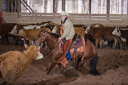 April 29 2017 - Minshall Farm Cutting 1, held at Minshall Farms, Hillsburgh Ontario. The event was put on by the Ontario Cutting Horse Association. Riding in the 2,000 Limited Rider Class is Al Garmiss on Qb Tilly Highbrow Cd owned by the rider.