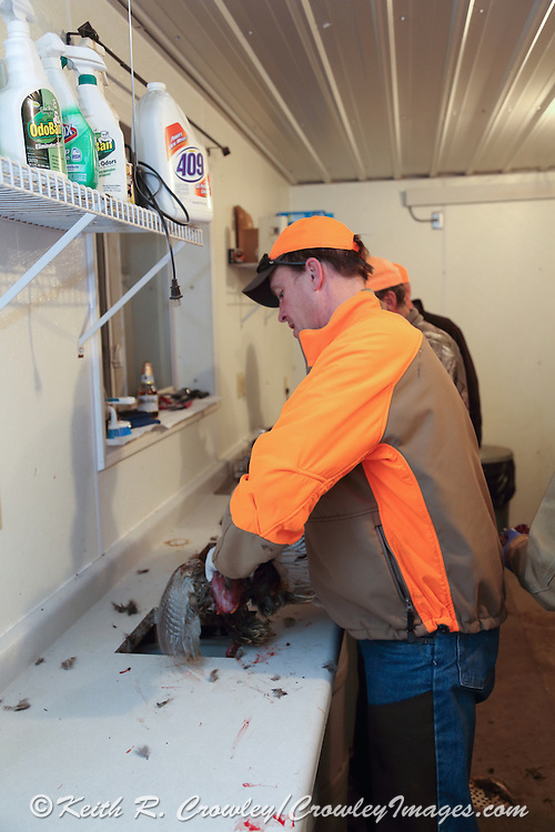 Inside the bird cleaning room at Vine valley Ranch in South Dakota