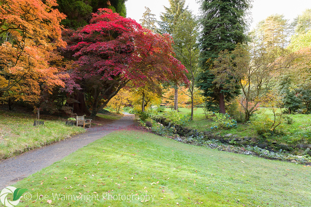 An early autumn morning at Bodnant Garden, North Wales