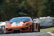 October 1-3, 2014 : Lamborghini Super Trofeo at Road Atlanta. #77 Joe Courtney, Peter Argetsinger, Musante Motorsport, Lamborghini Boston