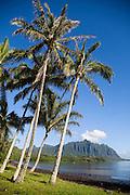 Waihole, Waikane, Kaneohe Bay, Oahu, Hawaii